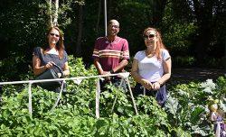 Builders merchants donate materials to community garden